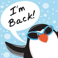 Penguin 2.0, novitá e strumenti per verificare l'impatto sul vostro blog