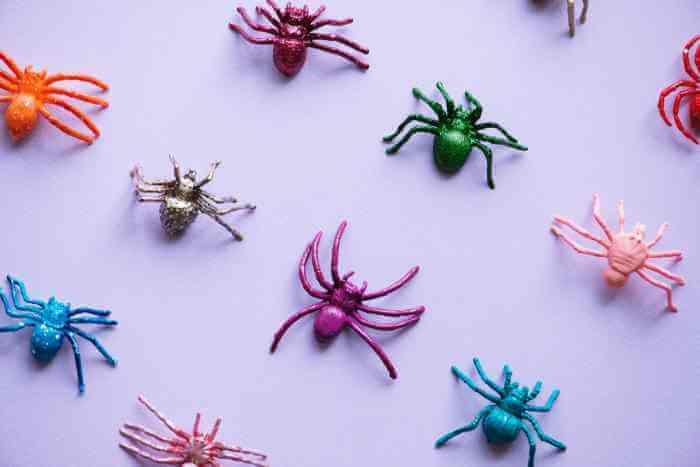 I migliori SEO spider tool per simulare il comportamento di Google