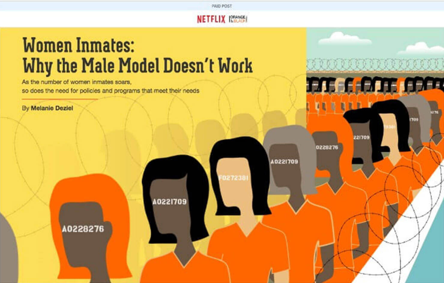 Netflix su new york times